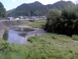 武儀から関を縦断する津保川