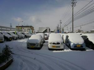 雪 展示場